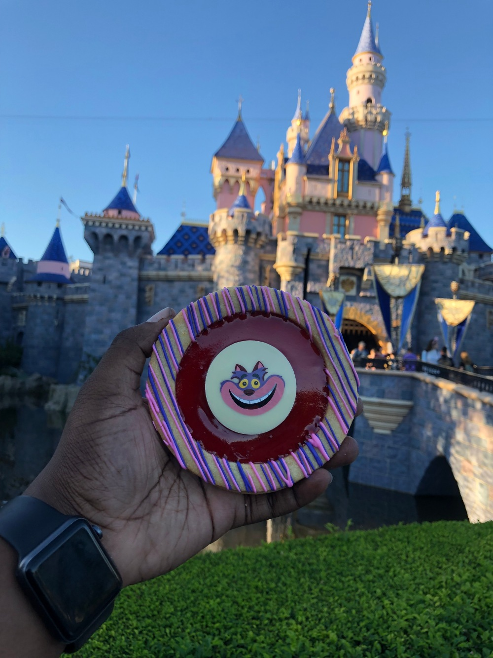 The Cheshire Cat Linzer Cooki